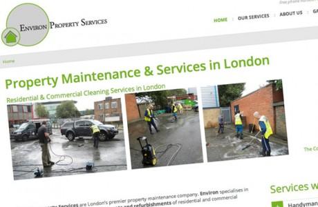Environ Property Services